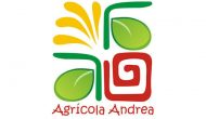 Agricola Andrea